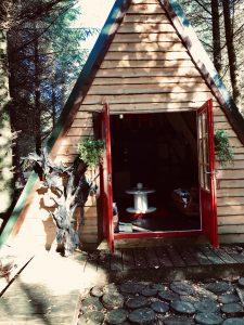 Bog Oak Sculptures & Cabins - Insight Media